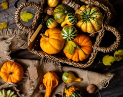 overhead shot of assorted small colorful pumpkins in wicker straw basket on rustic wooden thanksgiving table on sackcloth