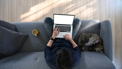 Overhead shot of young man sitting on sofa with his cat in living room and using laptop computer.