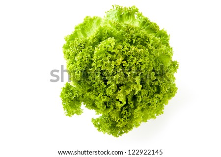 Overhead view of a a head of fresh young green frilly lettuce for use in salads and as a garnish isolated on white