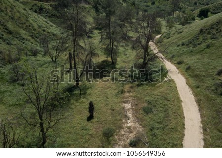 Overhead view of dirt walking trail leading through California woods and meadows.