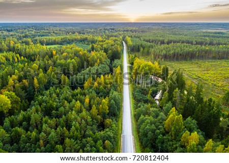 overhead view of foliage trees  ...