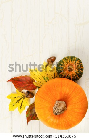 Overhead view of pumpkin with traditional Fall red and yellow leaves, gourds and acorns against aged white wood with copy space at top