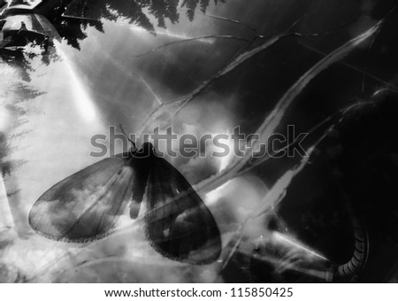 Overlay of photos for a surreal dream in black and white. - stock photo