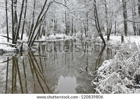 Overture of winter. River Sukhodrev. Kaluga region. Russia