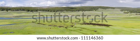 overview in Yellowstone National Park in Wyoming in the United States of America