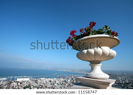 Overview of Haifa city in Israel, with plant in pot in foreground.