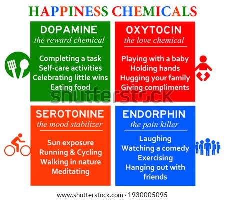 overview of the most common happiness chemicals Stockfoto ©