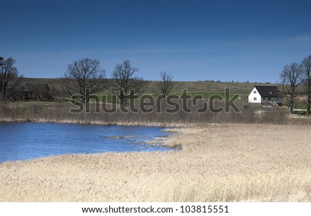 Owergrown lake with houses and field as background