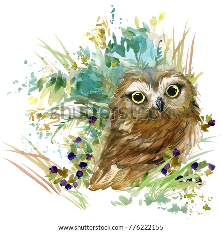 Stock Photo owl. forest animals watercolor illustration