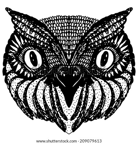 Owl Doodle Drawing Owl Head Doodle Hand Drawn on