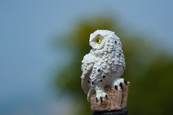 Owl statue on Doi Pha Tang, Chiang Rai