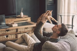 Owner playing with cat while relaxing on modern couch in living room interior. Young man resting with pet in soft chair at home.