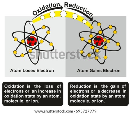 Shutterstock Oxidation and Reduction Process infographic diagram with an example of redox reaction between two atoms one of them get oxidized loses an electron while other get reduced gains an electron