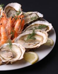 oyster and shrimp on black background