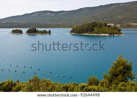Oyster Farm in Adriatic Sea near Dubrovnik, Croatia