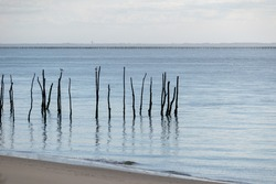 Oyster farming in Cap-Ferret with the sea in the background, Arcachon Bay