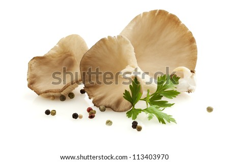 Oyster mushrooms - Pleurotus ostreatus - with mixed peppercorns and parsley leaf, isolated on white