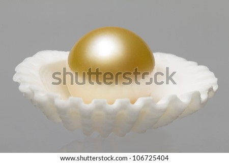 Oyster Shell and Pearl