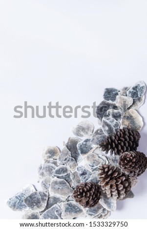 Oyster shell background layout, stock background for product. background for product shoot.