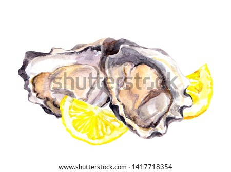 Oysters and lemon slices. Watercolor sea food painting
