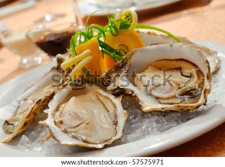 Oysters in a plate with ice
