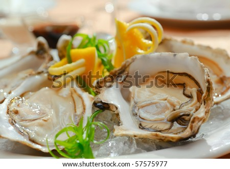 Oysters in a plate with ice - stock photo