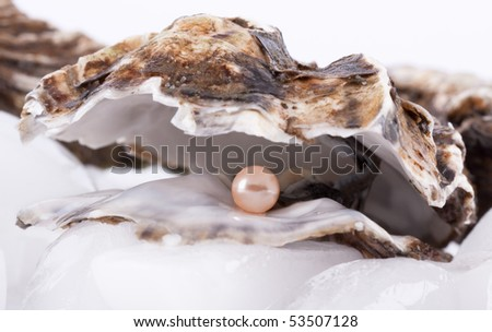 Oysters on ice with Pearl