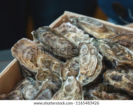Oysters on the counter in wooden boxes on the market. Oysters for sale at the seafood market. Fish market stall full of fresh shell oysters. Fresh oysters selective focus. Close up shot. #1165483426