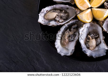 Oysters plate with lemon on grey background. Served table with oysters and lemon. Fresh oysters close-up top view. Healthy sea food. Oyster dinner with champagne in restaurant. Oysters with lemon  #1222123606