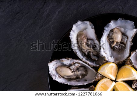 Oysters plate with lemon on grey background. Served table with oysters and lemon. Fresh oysters close-up top view. Healthy sea food. Oyster dinner with champagne in restaurant. Oysters with lemon