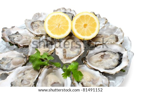 Oysters the Dozen on ice and with a piece of lemon on the side.