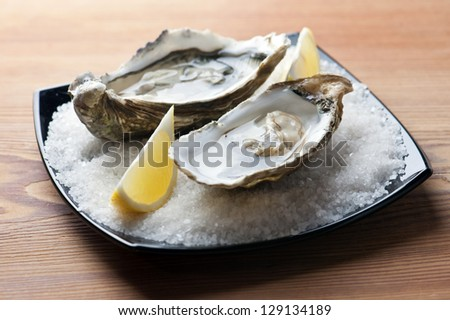 oysters with lemon close up