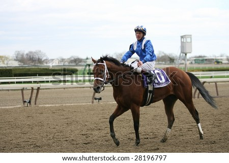 OZONE PARK - APR 4: Richard Migliore aboard Taqarub returns to the paddock after the finish of the 49th Running of the Bay Shore Grade III at Aqueduct Race Track- April 4, 2008 in Ozone Park, NY.