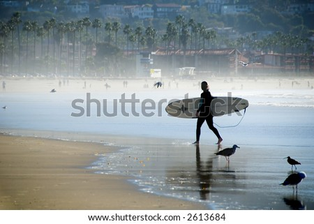 Pacific Surfer Girl - stock photo