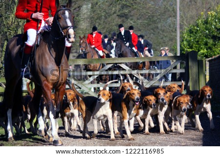 Pack of Old English Foxhounds alongside horse and Hunt Master followed by Members of the Hunt on horseback : Watton Abbey, East Yorkshire, UK : 2 March 2013 : Pic Mick Atkins #1222116985