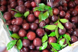 Pack of red plums in Bangkok