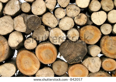 Pack of woods 1