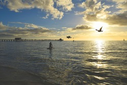 Paddle Boarding at Naples Pier with Birds Flying Over Head