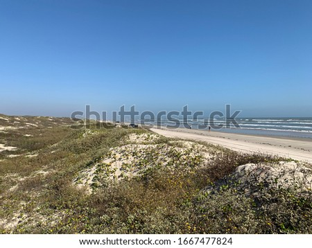 Padre Island National Seashore Texas Foto stock ©