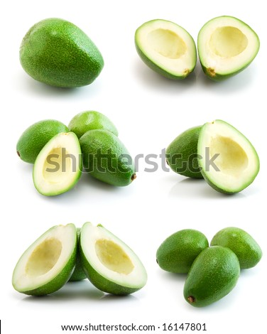 page of avocados isolated on the white background