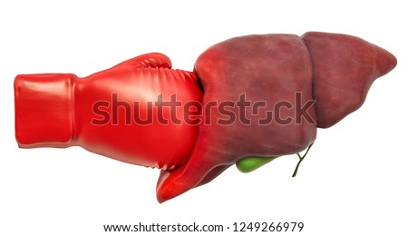 Pain in liver, liver disease concept. Human liver with boxing glove. 3D rendering isolated on white background