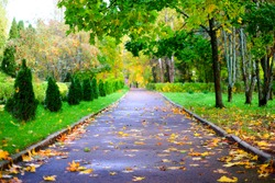 Paint a beautiful autumn Park with paths, trees and bushes