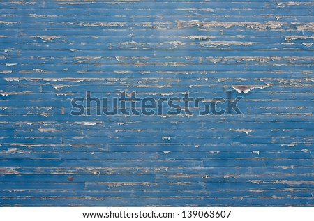Paint peels off a wood lap-sided wall.