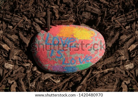 Painted rock that says, Love Is Love. #1420480970