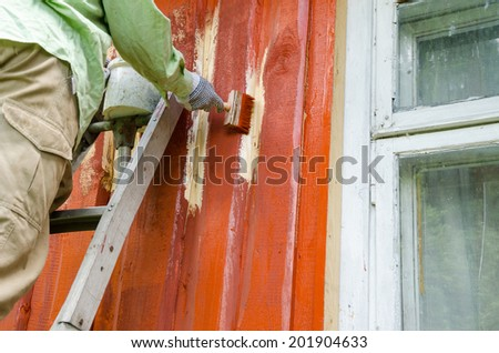 Painter worker man on ladder paint wooden rural house wall with brush paintbrush near window.
