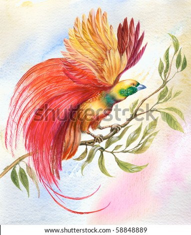 Painting of bright colorful bird with unusual feathers