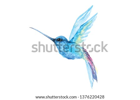 Painting of hummingbirds, watercolor on a white background.Cute little bird illustration,blue, bright colors, isolated on white.Painting of poultry living in the forest.