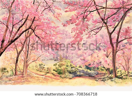 Painting watercolor landscape pink red flower of Wild himalayan cherry tree roadside in the morning with vintage emotion sky cloud background, Hand painted, beauty nature winter season in Thailand.