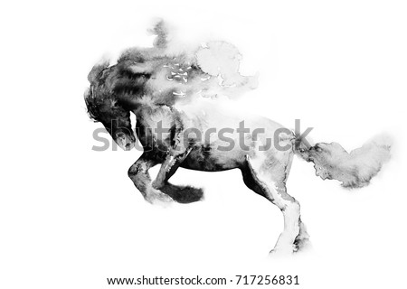 painting with watercolors, ink. Chinese, Japanese painting. horse on white background