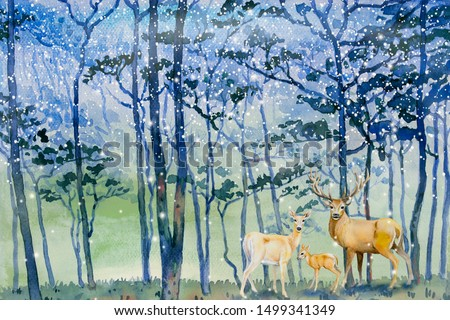 Paintings snow falls in forest winter - Watercolor landscape of animal, deer family concept with Christmas. Hand painted illustration on paper, blue trees cool background, beauty nature countryside.